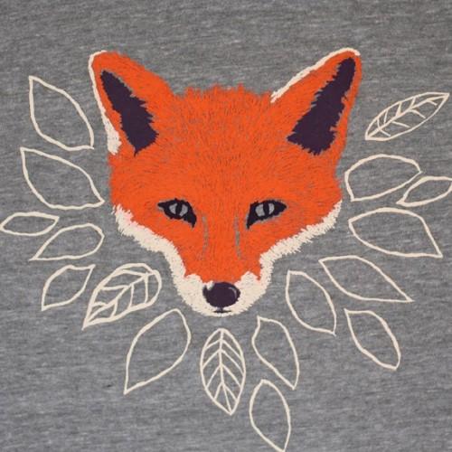 fox_grey_sm gnome