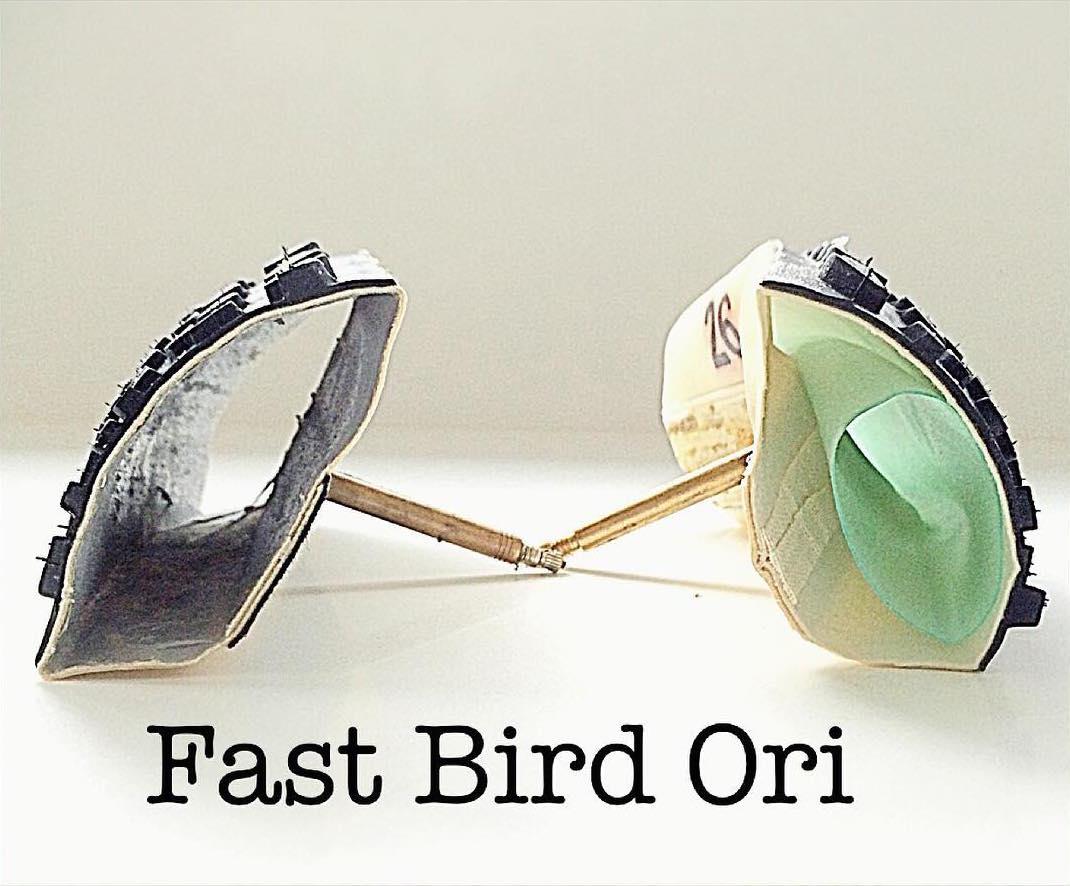 ori_fastbird