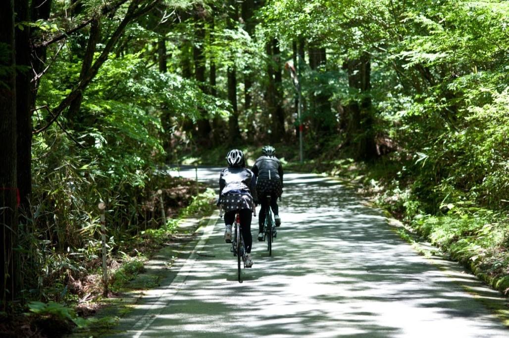 Gourmet Century Ride Asuke 2015