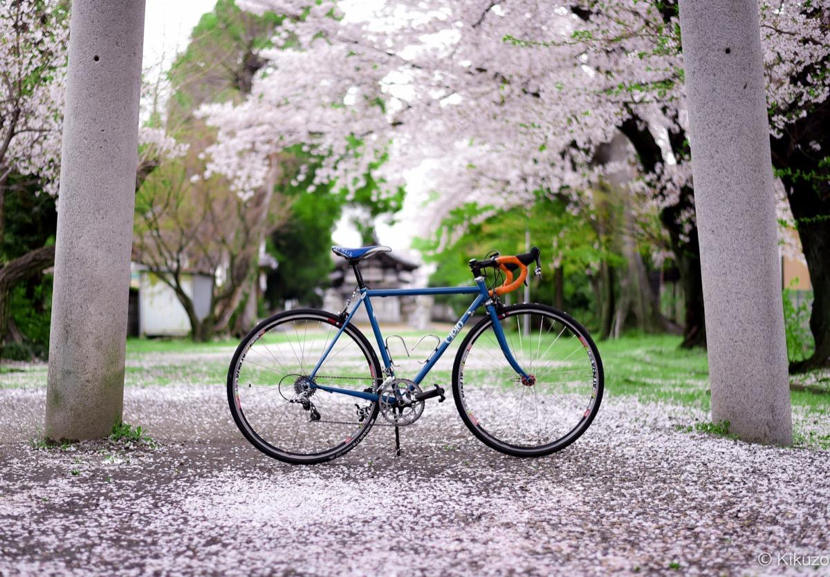 cielo cycles