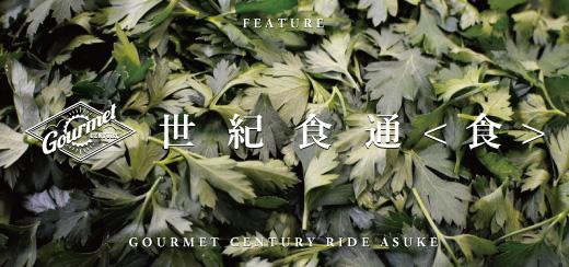 gcrasuke_bunner_shoku-01