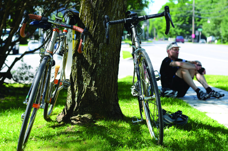 two-bikes-against-a-tree
