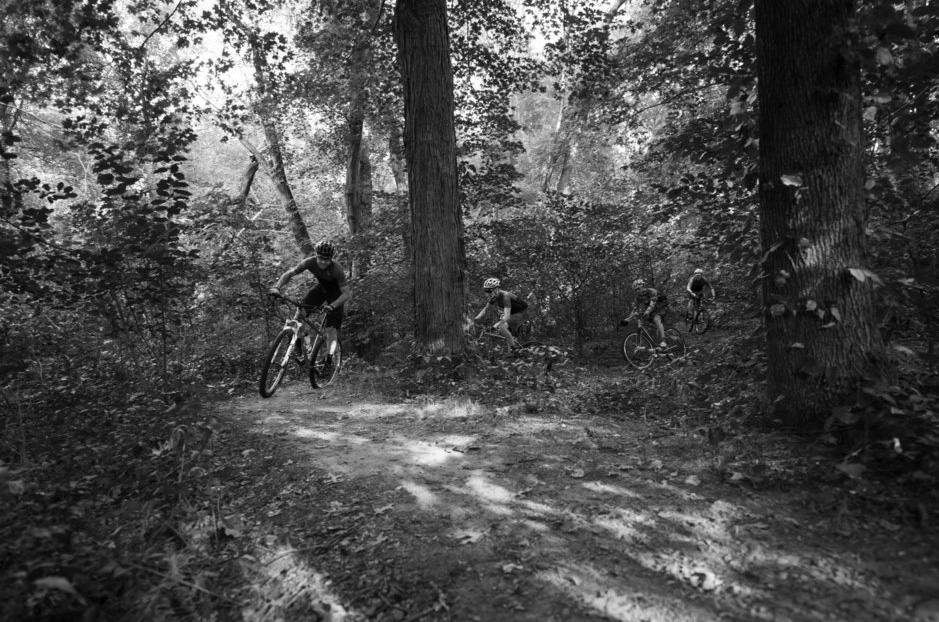 four-riders-in-the-woods
