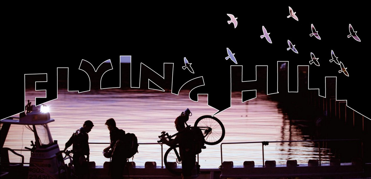 ridinbirds-landing